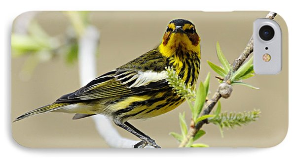 Cape May Warbler Phone Case by Larry Ricker