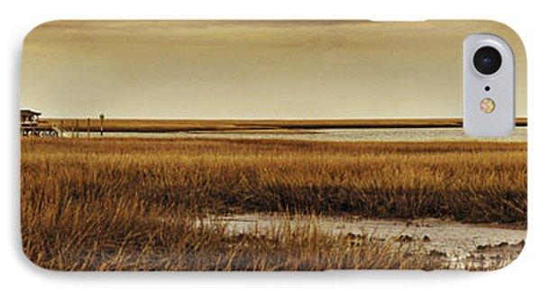 Cape Romaine Phone Case by Bruce Bain
