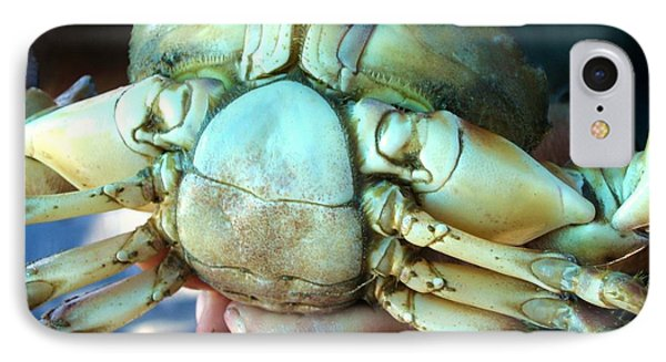 Capers Crab IPhone Case by Lyn Calahorrano