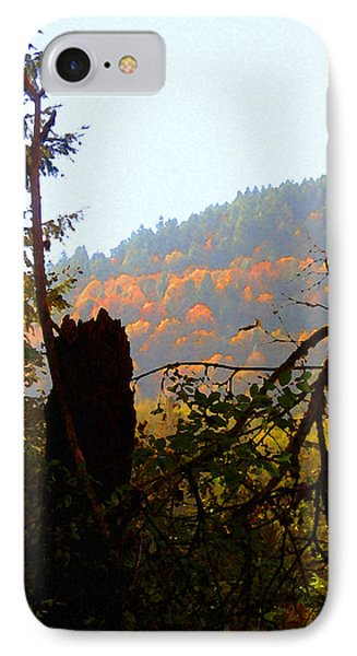 Capitol Forest IPhone Case by Timothy Bulone