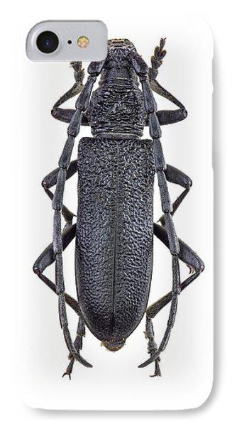 Capricorn Beetle IPhone Case