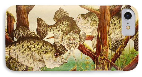 Captivating Crappies IPhone Case by Bruce Bley