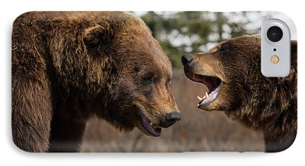 Captive  Male And Female Brown Bears IPhone Case by Doug Lindstrand