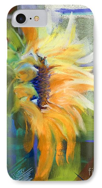 Captured Sunlight Phone Case by Tracy L Teeter