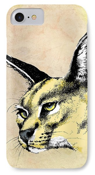 caracal Color IPhone Case by Anthony Mwangi