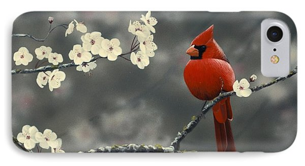 Cardinal And Blossoms Phone Case by Peter Mathios