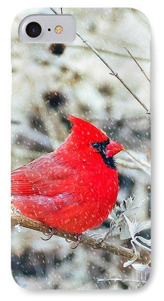 Cardinal Bird Christmas Card IPhone Case by Peggy Franz