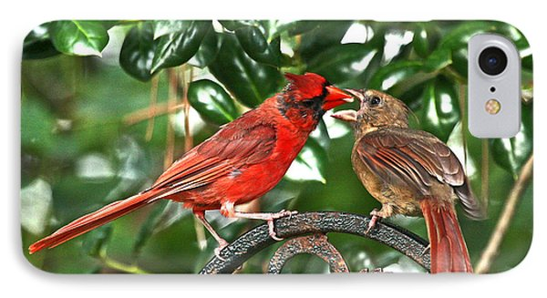 Cardinal Gift Of Love Photo IPhone Case by Luana K Perez