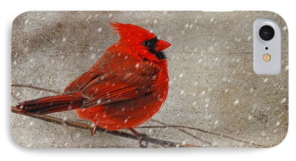 Cardinal In Snow Phone Case by Lois Bryan