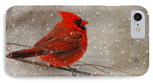 Cardinal In Snow IPhone 7 Case by Lois Bryan