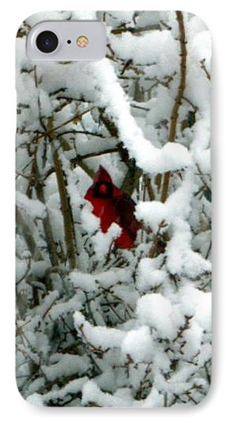 IPhone Case featuring the photograph Cardinal In The Snow by Cathy Shiflett