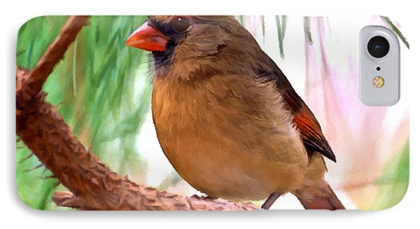 Cardinal IPhone Case by Bob and Nadine Johnston