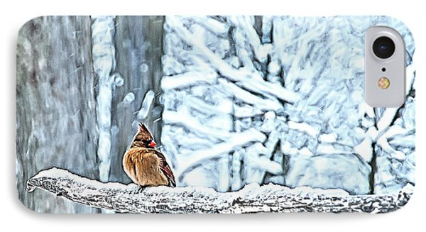 Cardinal No Mate To Keep Warm Phone Case by Randall Branham