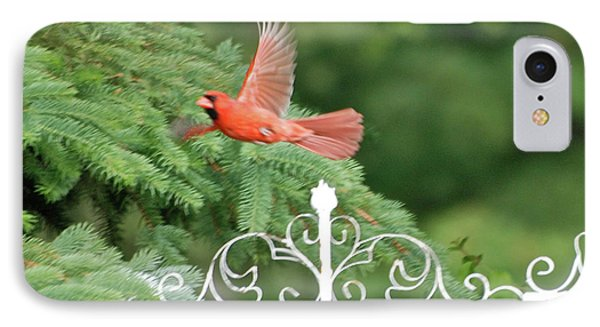 IPhone Case featuring the photograph Cardinal Time To Soar by Thomas Woolworth
