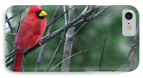 Cardinal West IPhone Case by Jeff Kolker