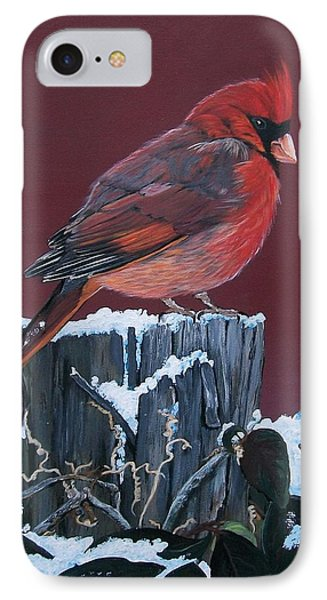Cardinal Winter Songbird IPhone Case by Sharon Duguay