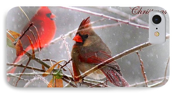 Cardinals - Male And Female - Img_003card IPhone Case