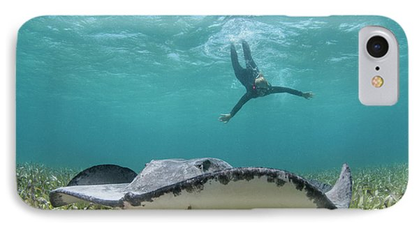 Caribbean Whiptail Ray (himantura IPhone Case by Pete Oxford