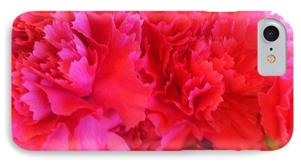 IPhone Case featuring the photograph Carnation  by Alohi Fujimoto