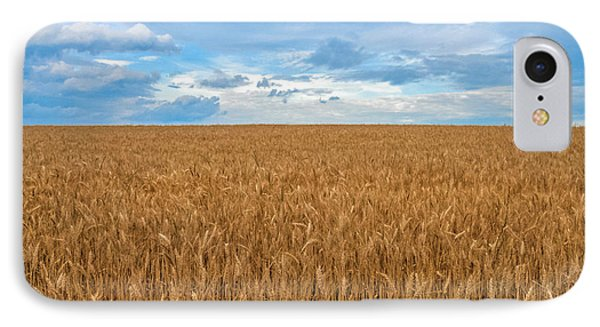 IPhone Case featuring the photograph Carolina Wheat Field by Marion Johnson