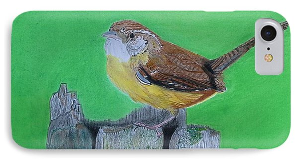 Carolina Wren IPhone Case by Tony Clark