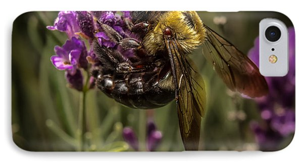 Carpenter Bee On A Lavender Spike Phone Case by Ron Pate