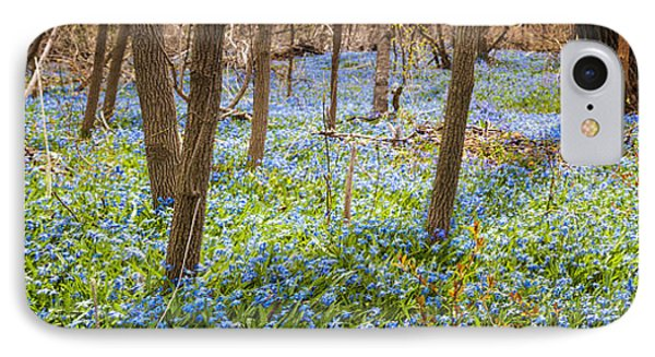 Carpet Of Blue Flowers In Spring Forest IPhone Case by Elena Elisseeva
