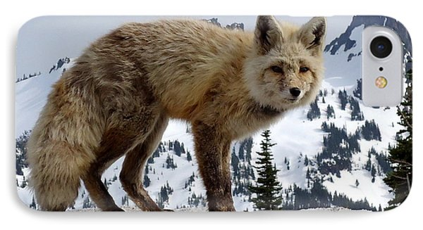 Cascade Red Fox 1 IPhone Case by Peter Mooyman