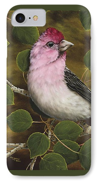 Cassins Finch IPhone Case by Rick Bainbridge