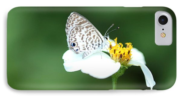IPhone Case featuring the photograph Cassius Blue On Wildflower by Greg Allore