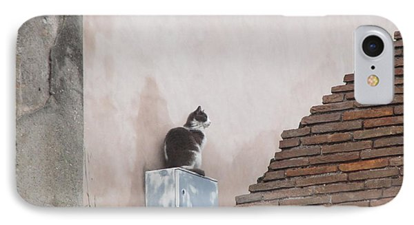 IPhone Case featuring the photograph Cat Above The Roman Ruins by Tiffany Erdman