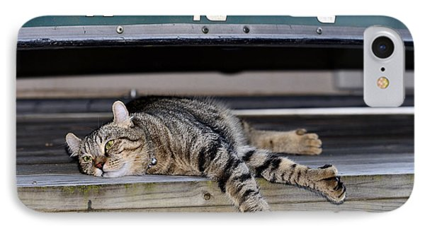 Cat And A Canoe Phone Case by Susan Leggett