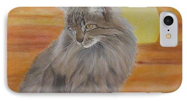 Cat And Sunset  Phone Case by Cybele Chaves
