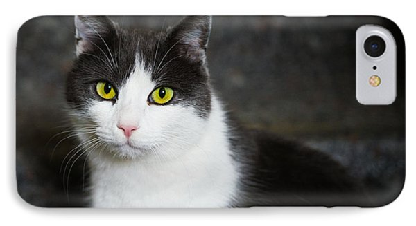 Cat Black And White With Green And Yellow Eyes Phone Case by Matthias Hauser