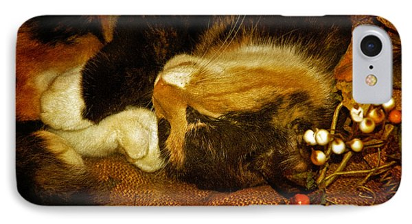 Cat Catnapping IPhone Case by Lois Bryan