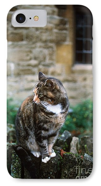 Cat In England Phone Case by James L. Amos