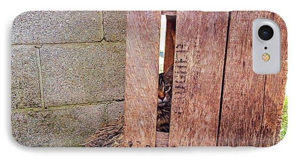 Cat In Hiding IPhone Case