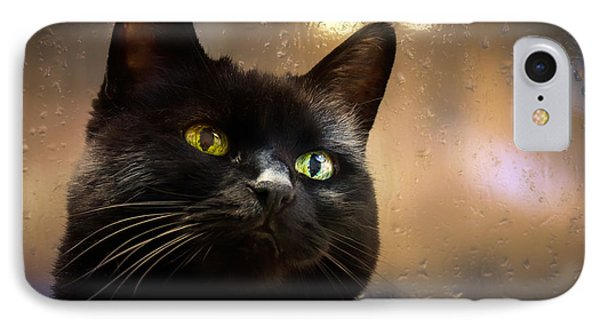 Cat In The Window Phone Case by Bob Orsillo