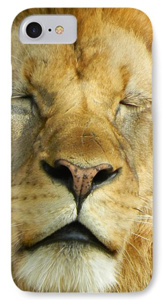 Cat Nap IPhone Case by Emmy Marie Vickers