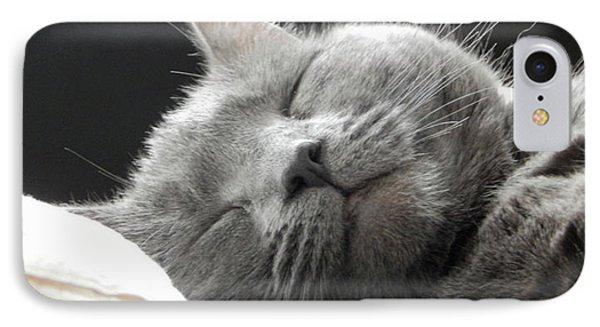 Cat Nap IPhone Case by Karen Cook