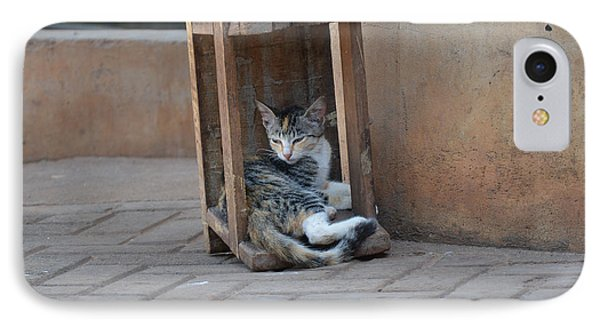 IPhone Case featuring the photograph Cat Nap by Ronda Broatch
