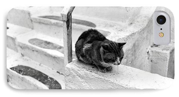 Cat Napping Mono Phone Case by John Rizzuto
