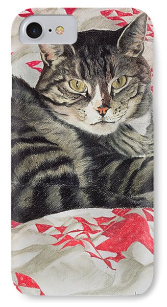 Cat On Quilt  IPhone Case by Anne Robinson