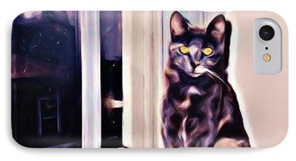 Cat On Window Sill Phone Case by John Malone