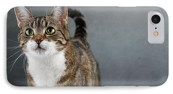 Cat Portrait IPhone Case by Nailia Schwarz
