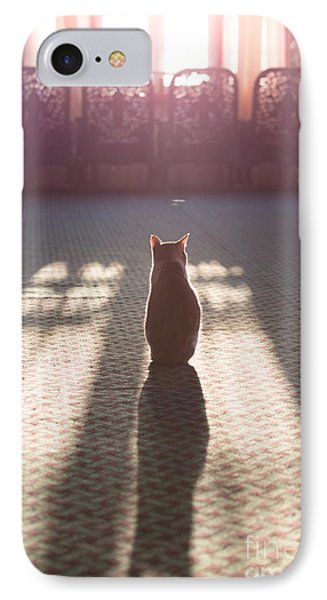 Cat Sitting Near Window IPhone Case by Matteo Colombo