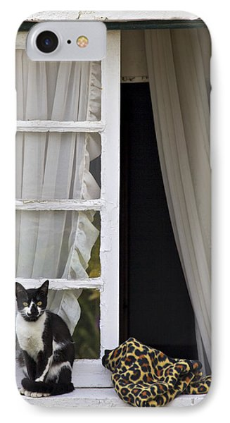 Cat Sitting On The Ledge Of An Open Wood Window Phone Case by David Letts