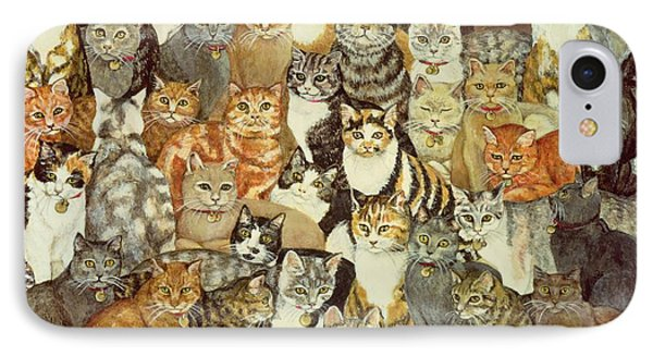 Cat Spread IPhone Case by Ditz