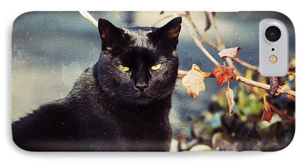 Cat Stevens Phone Case by Trish Tritz