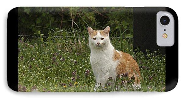 Cat Symbol Of IPhone Case